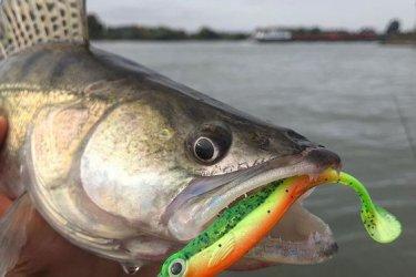Eladó horgásztanya